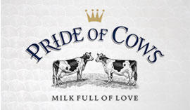 Pride Of Cows